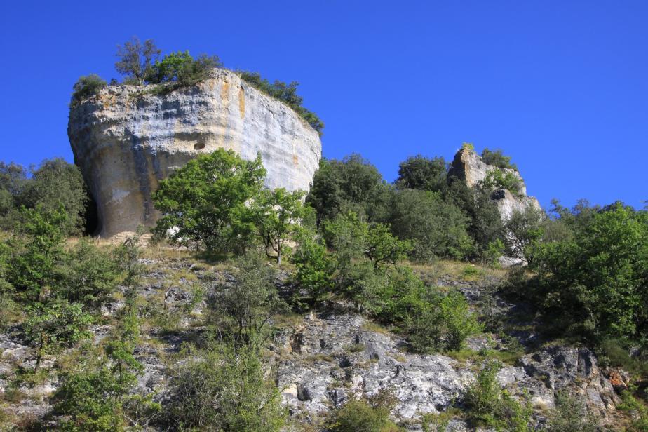 Coteau de Saint-Cirq du Bugue et des Eyzies (ZNIEFF 720008208) © J.-C. Abadie