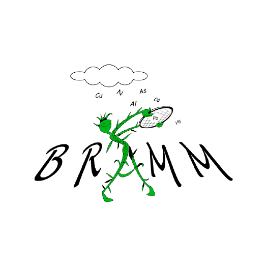 Logo BRAMM