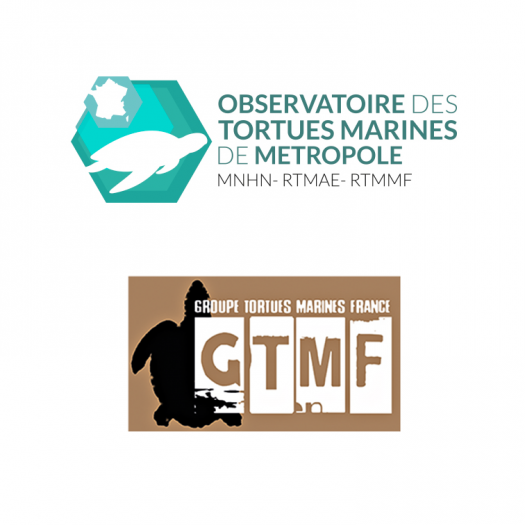 Logos Observatoire tortues marines GTMF