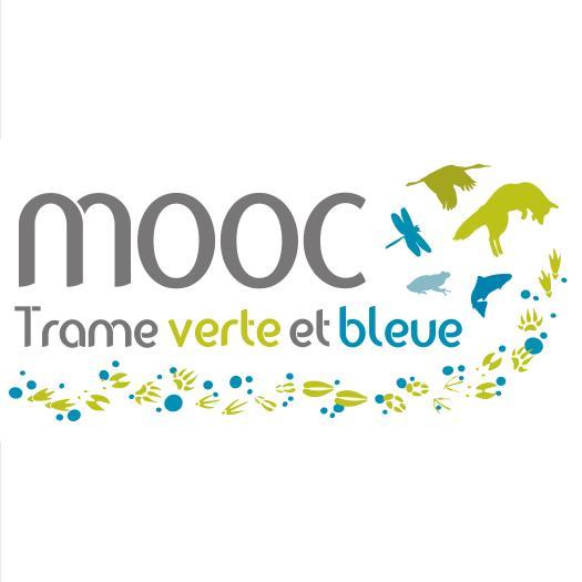 Logo MOOC TVB carré