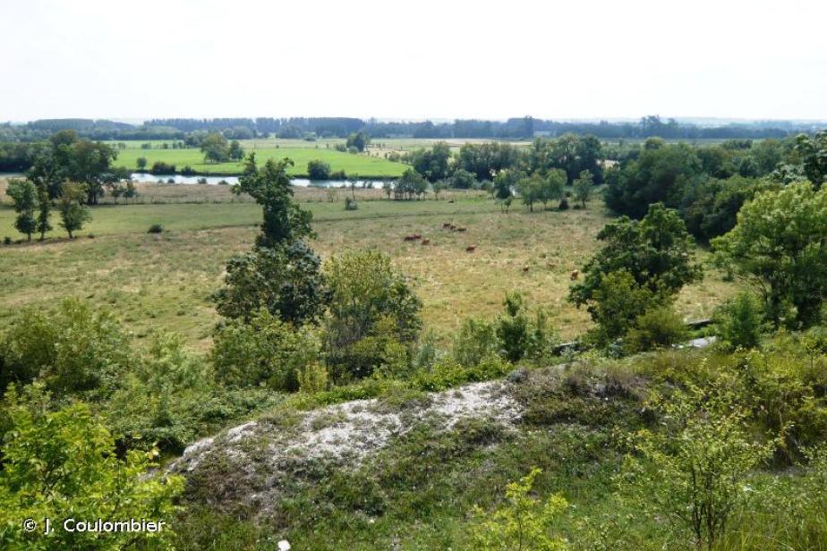 Moyenne vallée de la Charente et Seugnes et Coran © J. Coulombier