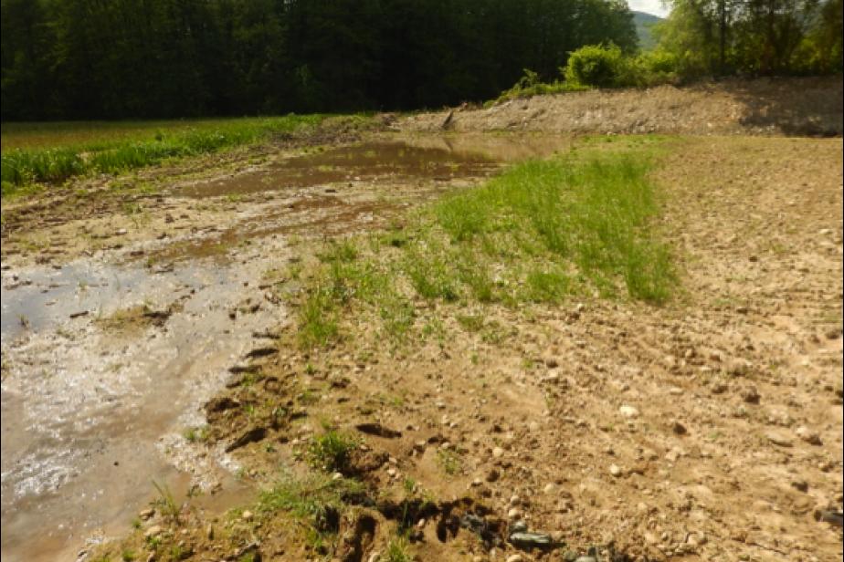 Action écologique de décaissage de remblai en zones humides en Isère © G. Gayet