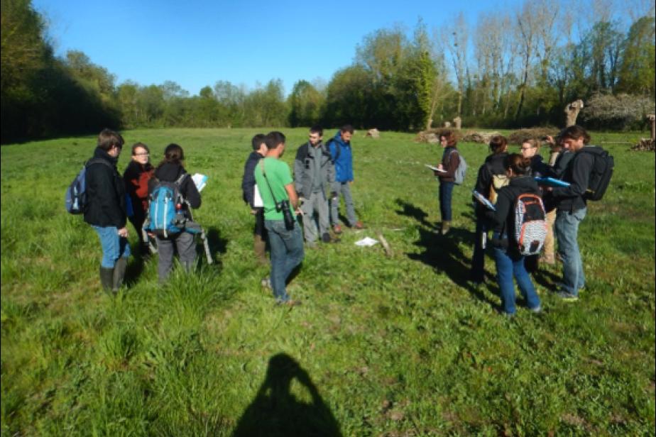 Formation à la méthode nationale d'évaluation des fonctions des zones humides en Charente-Maritime © G. Gayet