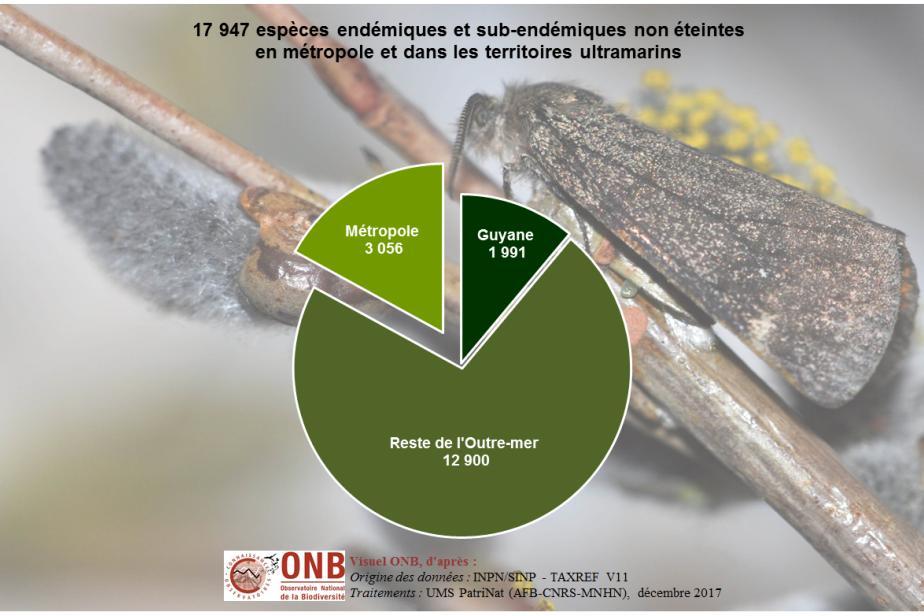 Espèces endémiques en France