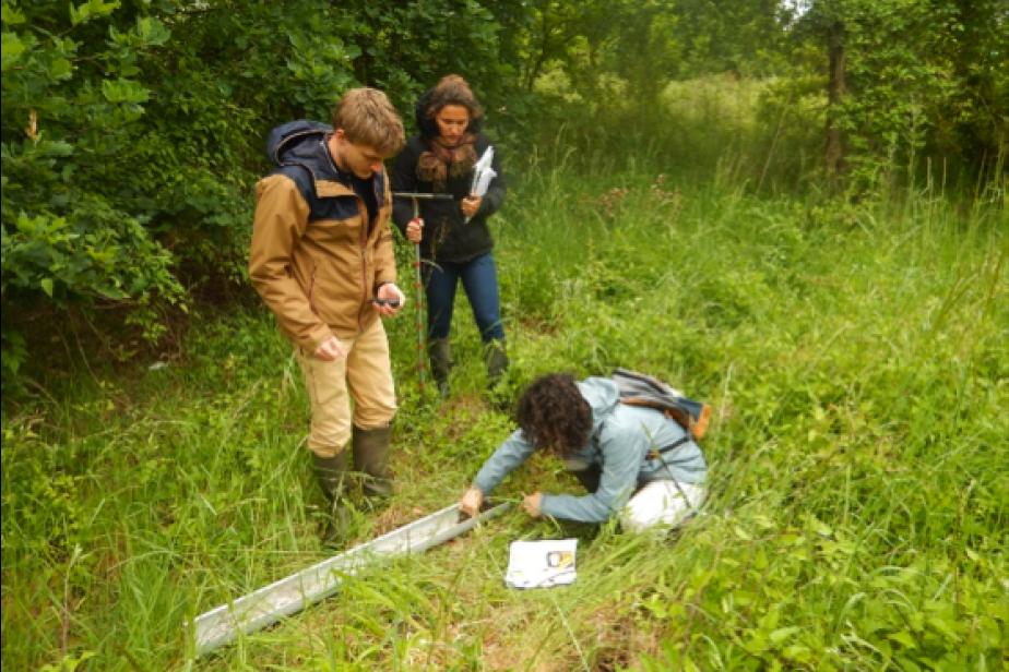 Test du prototype 2018 de la méthode nationale d'évaluation des fonctions des zones humides avec les partenaires locaux en Gironde © G. Gayet