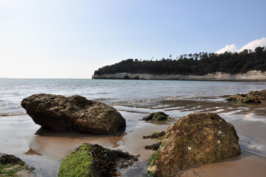 Estuaire, marais et coteaux de la Gironde en Charente-Maritime (ZNIEFF 540004658) © F. Lepareur