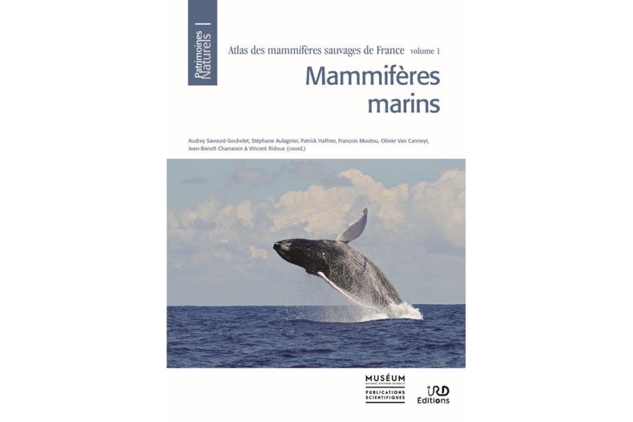 Couverture Atlas mammifères marins