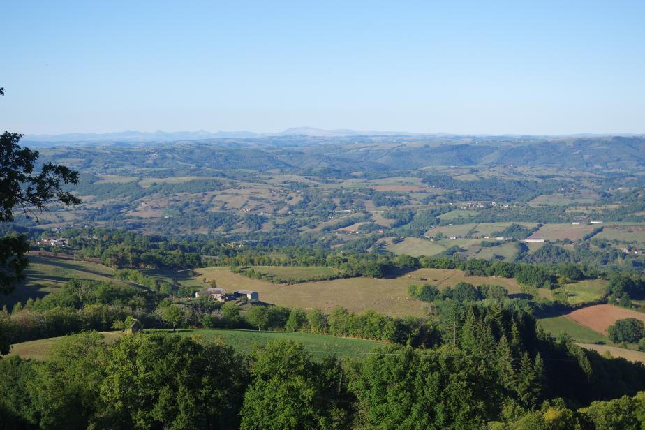Réseau de haies en Aveyron
