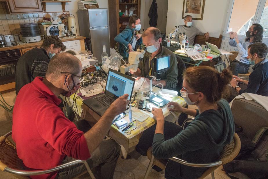 Laboratoire volet terrestre de la Planète Revisitée Agriate - jean Ichter