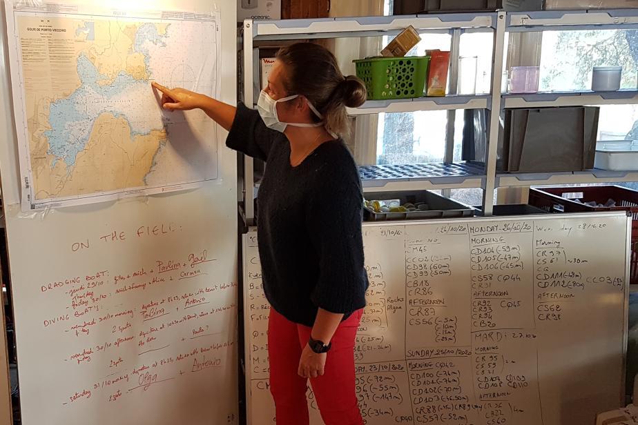 Planification des sites d'échantillonnage - Fanny Lepareur