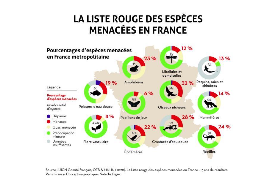 infographie_13ans_liste_rouge_carte_metropole