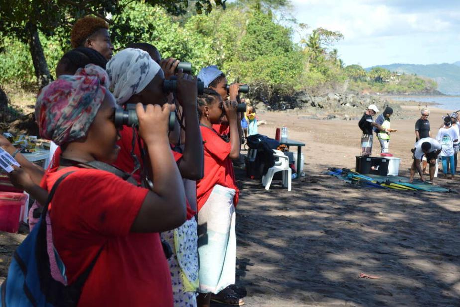 Observation des oiseaux marins à Mayotte - Fanny Cautain / OFB