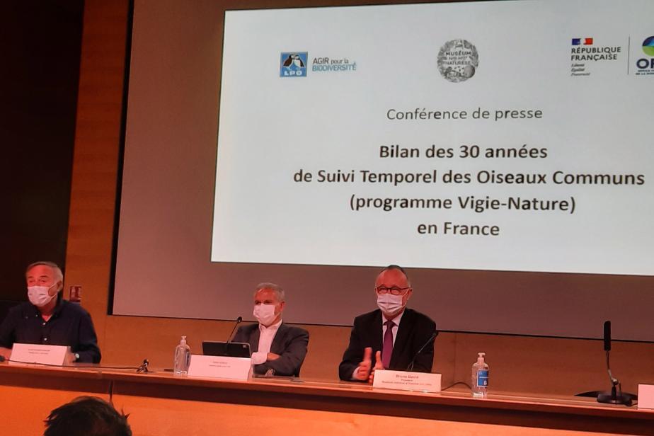 Conférence presse 30 ans du stoc - Benoit Fontaine
