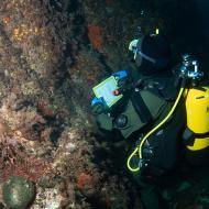 Plongée scientifique - J. Utge
