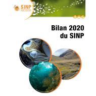 bilan_sinp_2020